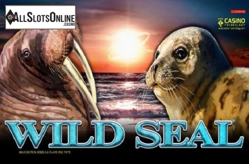 Wild Seal